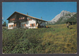 87192/ DOLOMITI, Monte Antelao, Rifugio Antelao - Non Classificati