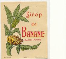 AN 451 / ETIQUETTE      SIROP DE BANANE SACCHARINE - Fruit En Groenten