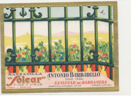 AN 479 / ETIQUETTE     MANZANILLA  SOLEAR   SANLUCAR DE BARRAMEDA - Etichette