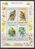 1981 Ghana  Birds Oiseaux Complete Set Of 1  Souvenir Sheet MNH - Ghana (1957-...)