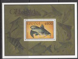 1991 Ghana  Poisson Fish   Souvenir Sheet MNH - Ghana (1957-...)