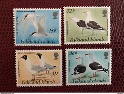 MALOUINES FALKLAND 1993  Complète  4v Neuf ** MNH YT 590 A 593 Mouette Seagull Bird - Gaviotas