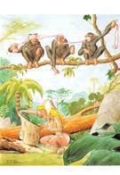 Pierre MILON - Pin-up - Jungle - Singes - Autres Illustrateurs