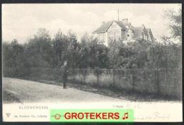 BLOEMENDAAL 't Kopje Met Villa 1904 - Bloemendaal
