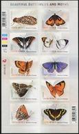 SOUTH AFRICA 2013 Beautiful Butterflies And Moths Insects Animals Fauna S/A Sheet MNH - Mariposas