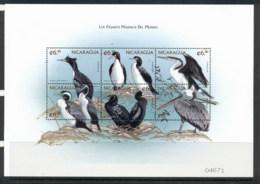 Nicaragua 1999 Birds MS Muh - Nicaragua