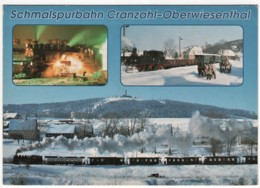 Sehmatal - Schmalspurbahn Cranzahl Oberwiesenthal   Lokomotive - Sehmatal