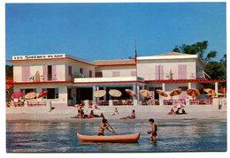 Les Sirènes Centre A.N.A.S. La Capte Hyères - Hyeres