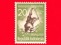 INDONESIA - Nuovo - 1959 - Campagna Di Protezione Degli Animali - Bornean Orangutan (Pongo Pygmaeus) - 20 - Indonesia