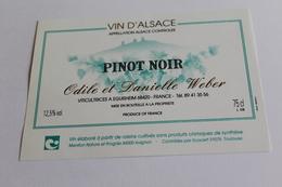 Etiquette Neuve Jamais Servie Vin D Alsace   PINOT NOIR  Odile Et Danielle Weber  Eguisheim - Rouges