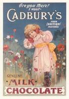 Postcard Advertising Cadbury's Milk Chocolate [ Reproduction ] My Ref  B23663 - Advertising