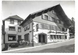 """67 - OBERSTEIGEN - Hôtel Restaurant Pension """"Goldbrunnen"""" - France"""