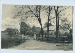 N2133-2179/ Kehdingbruch Bei Belum AK 1908 - Germania