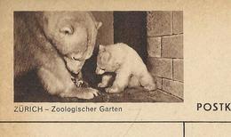 Carte Illustrée Neuve N° 163 - 0330 F   ZÜRICH - Zoologischer Garten ( Ours Polaire Et Bébé)  (Zumstein 2009) - Entiers Postaux