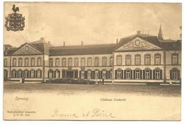 (G213) SERAING - Château Cockerill - Seraing