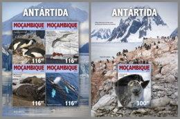 MOZAMBIQUE 2019 MNH Antarctica Antarktis Südpol Antarctique M/S+S/S - IMPERFORATED - DH1924 - Antarctic Wildlife