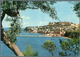 °°° Cartolina N. 27 Isola Di Procida Primavera Sull'isola Viaggiata  °°° - Napoli