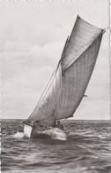 Ile D'Oléron 17 - Saint-Denis - Voilier - Bâteaux - Editions Van Eyck-Rouleau - 1953 - Ile D'Oléron