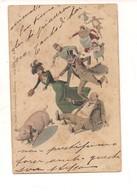 P111 UMORISTICA MAIALE THEO STROEFER'S INSEGUIMENTO 1900 VIAGGIATA - Humor