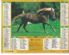 ALMANACH DES POSTES  1991 ( CALENDRIER  ) - CHEVAL PUR SANG + CHEVAUX - Calendriers