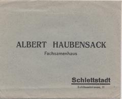 SELESTAT - SCHLETTSTADT (67) - LETTRE + FACTURE ALBERT HAUBENSACK - SEMENCES - Menus