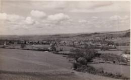 AM12 RPPC - Unidentified Landscape - Photographs