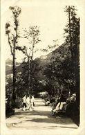 China, HONG KONG, Old Botanic Garden (1910s) RPPC Postcard - China (Hong Kong)