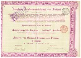 Ancien Titre - Naamloze Tuinbouwmaatschappij Van Linthout - Société Anonyme Horticole De Linthout. -Titre De 1904 - Rare - Agriculture