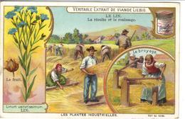 Chromo Liebig - Les Plantes Industrielles - Le Lin - Liebig