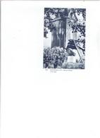 Oosteeklo 605 - Houten Molen - 1740-1949 - Kaprijke