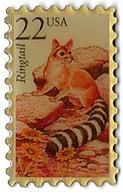 TP10 - TIMBRES - USA - RINGTAIL - Verso : SM - Mail Services
