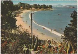 Australia TASMANIA Sandy Bay Beach HOBART Engelander Kruger 798/4 Postcard C1960s - Hobart
