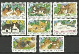 TURKS & CAICOS  1995  DOMESTIC CATS SET  MNH - Gatti