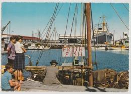 Australia TASMANIA Wharves Ships Docks HOBART Engelander Krüger 798/15 Postcard C1960s - Lauceston