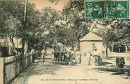#230619B - 83 ILE DE PORQUEROLLES Avenue De La Place D'armes - Attelage Paire De Boeufs Tonneau Lampion - Porquerolles