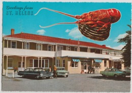 Australia TASMANIA Crayfish Hotel Cars ST HELENS Engelander Krüger 798/35 Postcard C1960s - Australia