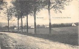 Montigny-le-Tilleul NA19: Bomerée. Panorama Du Vert-Bois 1914 - Montigny-le-Tilleul