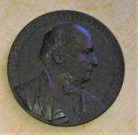 MEDAILLE ORGINALE JULES GREVY Président De La République Française Signé DANIEL DUPUIS 30 JANVIER 1879 - Autres