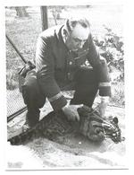 TRÈS RARE - Zoo De Vincennes - Le Gardien Avec Une Panthère Nébuleuse - Fin Années 30 - Photo 18x24 Argentique - Altri
