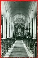 Adegem (Maldegem): Binnenzicht Kerk - Maldegem