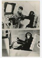 Chimpanze Press Presse Photo 1987 80s Superbe Agip FILM PROJET X Virgil Singe Monkey Cinema Matthew Broderick - Automobiles