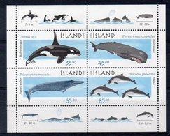 ISLANDE    Timbres Neufs ** De 1999  ( Ref 6557 ) Animaux - Mammifères Marins - Baleines - Blocs-feuillets