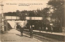 Nessonvaux : Passerelle Et Tunnel Du Chemin De Fer Bruxelles-Cologne 1909 - Trooz