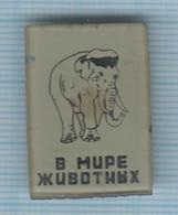 USSR / Badge / Soviet Union / RUSSIA Elephant. In The Animal World 1960-70s - Animals