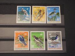 COMORES - 1971 UCCELLI 6  VALORI - NUOVI(++) - Isole Comore (1975-...)