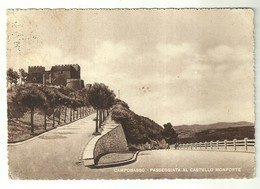 """4433 """"CAMPOBASSO-PASSEGGIATA AL CASTELLO MONFORTE"""" CARTOLINA POST.  ORIGINALE SPED 1967. - Campobasso"""