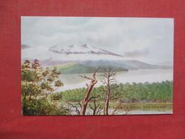 Lake Te Anue New Zealand   Ref 3433 - New Zealand