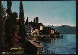 Brissago / Tessin  -  Lago Maggiore  -  Ansichtskarte Ca. 1964    (11183) - TI Tessin