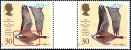 WATERFOWLS-WHITE FRONTED GOOSE-THE WILDFOWL & WETLANDS TRUST- GUTTER PAIR-VARIETY-GREAT BRITAIN-1996-MNH-B9-881 - Oies