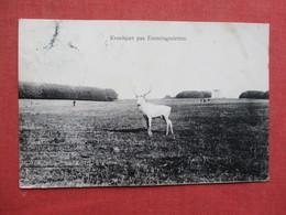 Denmark Animal   Ref 3434 - Other